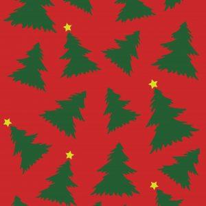 Duch Vianoc